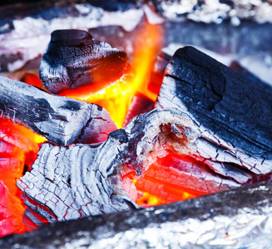 BBQ Cooking Charcoal - Fruitwood Charcoal