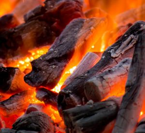 BBQ Cooking Charcoal - Gidgee